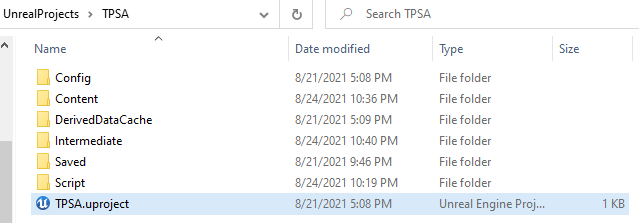 unreal engine folder and directory